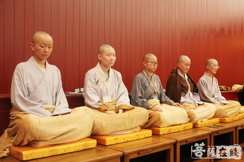静心禅修(图片来源:菩萨在线 摄影:妙澄)
