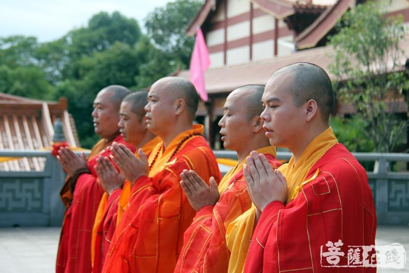 祈愿佛力加被(图片来源:菩萨在线 摄影:妙雨)