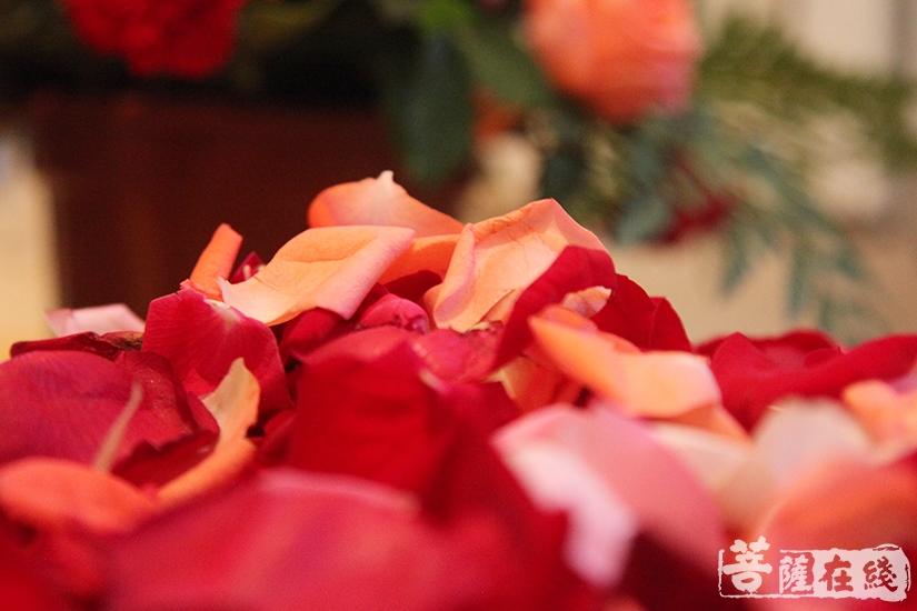 香花迎 香花请(图片来源:菩萨在线 摄影:慧德)