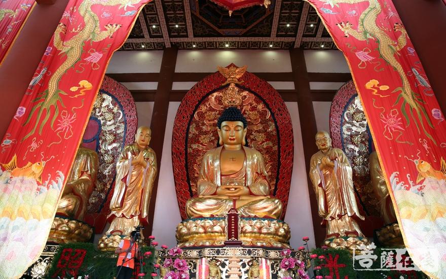开光佛像(图片来源:菩萨在线 摄影:妙雨)