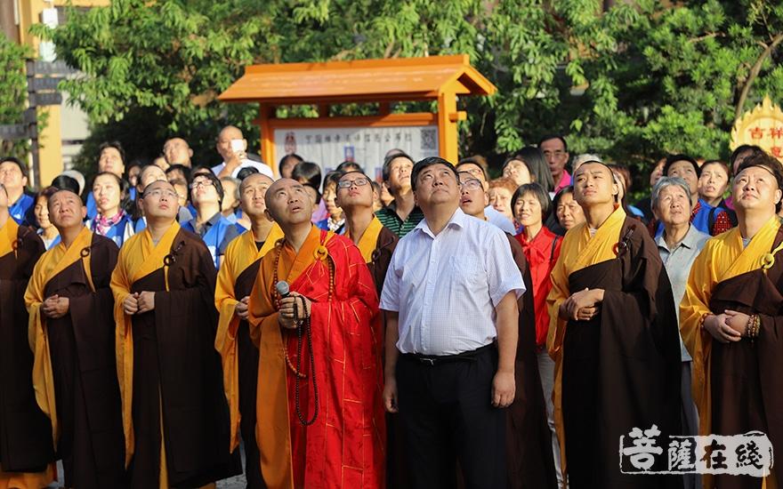聚精会神(图片来源:菩萨在线 摄影:妙澄)