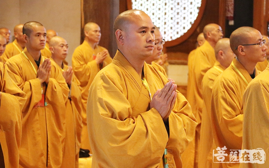 长跪合掌(图片来源:菩萨在线 摄影:妙月)