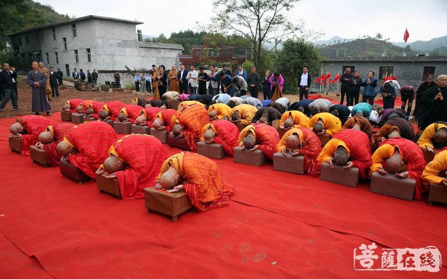 如法如律(图片来源:菩萨在线 摄影:妙雨)