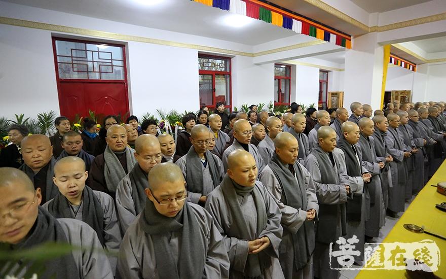 两序大众齐诵阿弥陀佛圣号(图片来源:菩萨在线 摄影:妙梵)