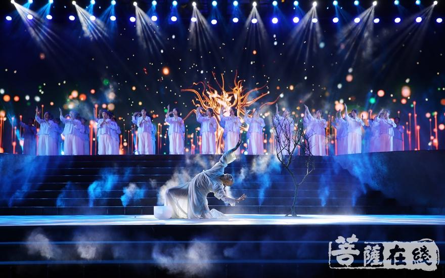 视觉盛宴(图片来源:菩萨在线 摄影:妙澄)