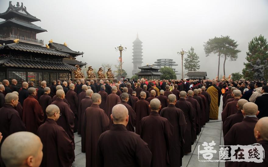 践行弥陀大愿(图片来源:菩萨在线 摄影:妙雨)