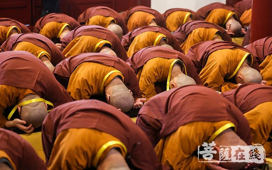 众新戒具足沙弥威仪(图片来源:菩萨在线 摄影:果仁)