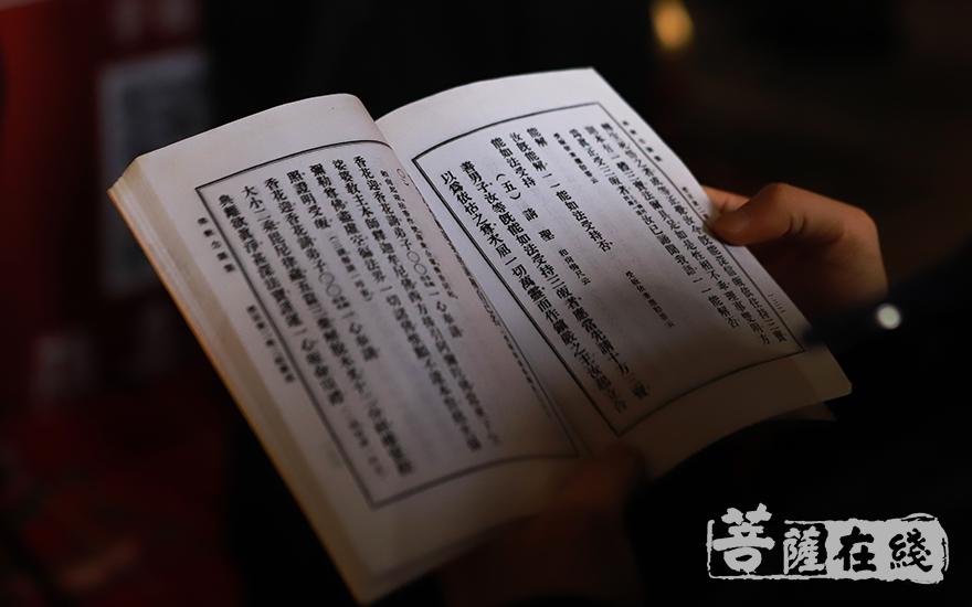 矢愿皈依佛法僧三宝(图片来源:菩萨在线 摄影:妙言)