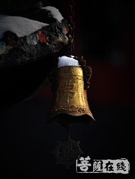 万籁此都寂,但余钟磬音(图片来源:菩萨在线 摄影:北普陀寺)