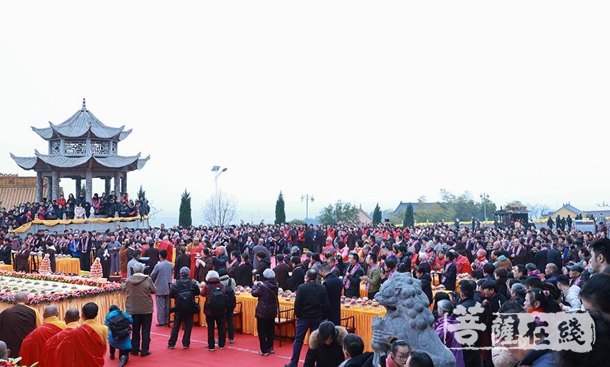缅怀老和尚(图片来源:菩萨在线 摄影:妙澄)