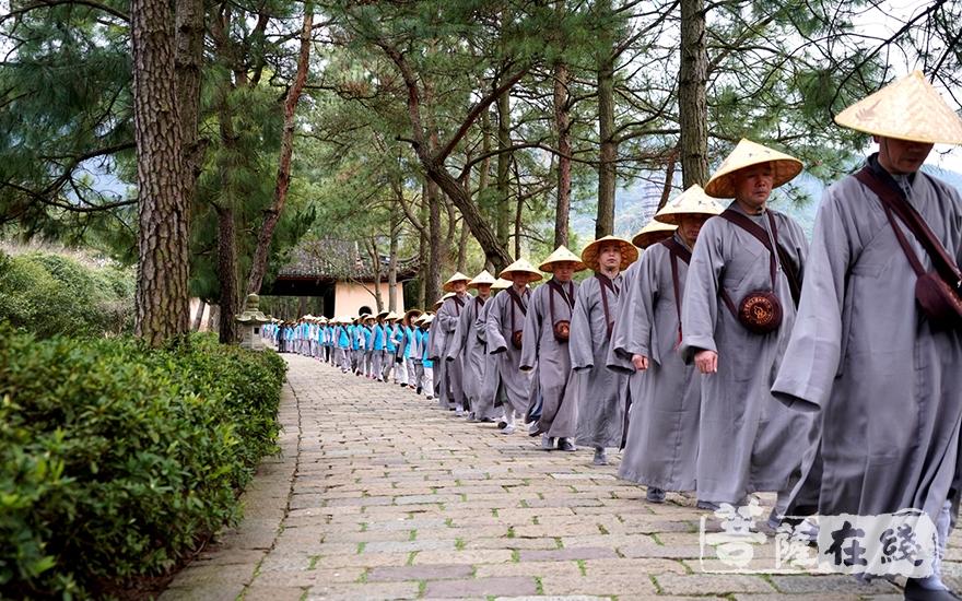 继承发扬佛教的优良传统(图片来源:天童禅寺 摄影:崇和法师)