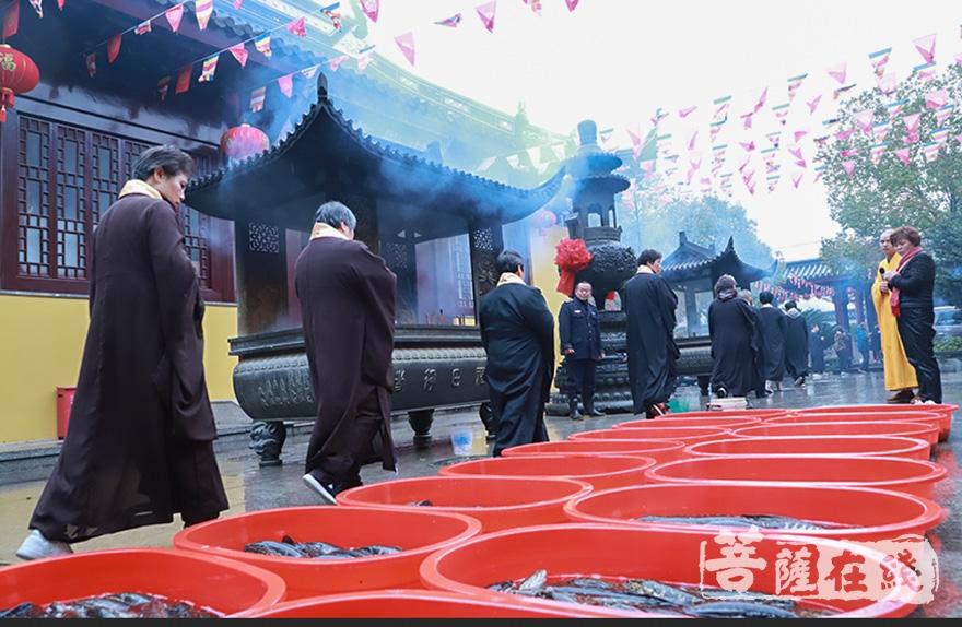 祈愿所放生灵永脱轮回(图片来源:菩萨在线 摄影:妙澄)