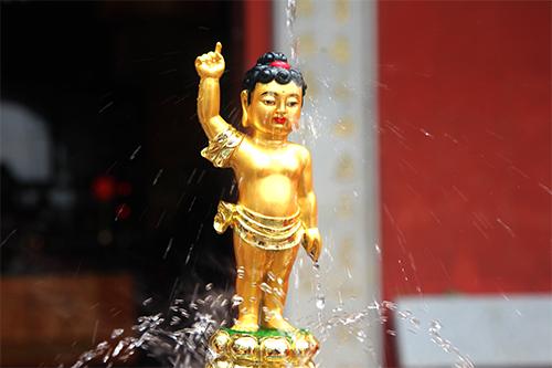 听闻佛陀教理 证得阿罗汉