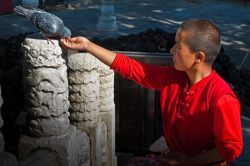 母亲节 SOS村孤儿做客博华寺 感受来自佛陀的温暖