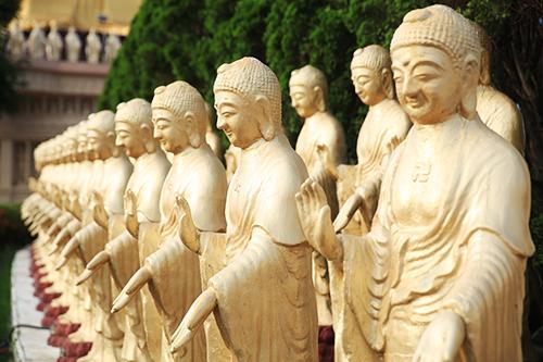 善乐和平——善音歌者桑吉平措献声佛国