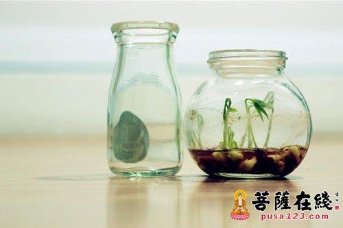 人生就像一个空瓶子