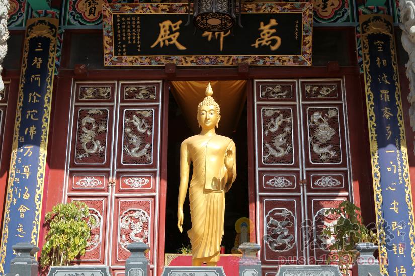 万佛殿佛像(图片来源:菩萨在线 摄影:妙静)