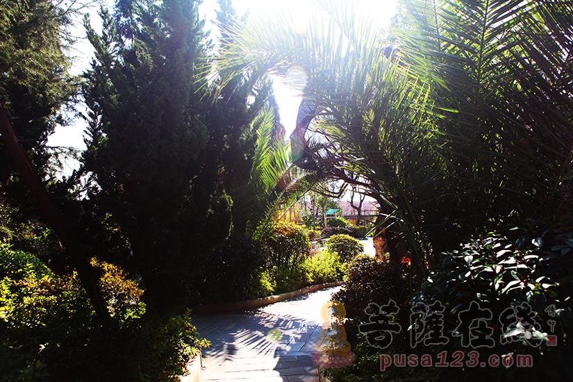 环境优美(图片来源:菩萨在线 摄影:妙静)