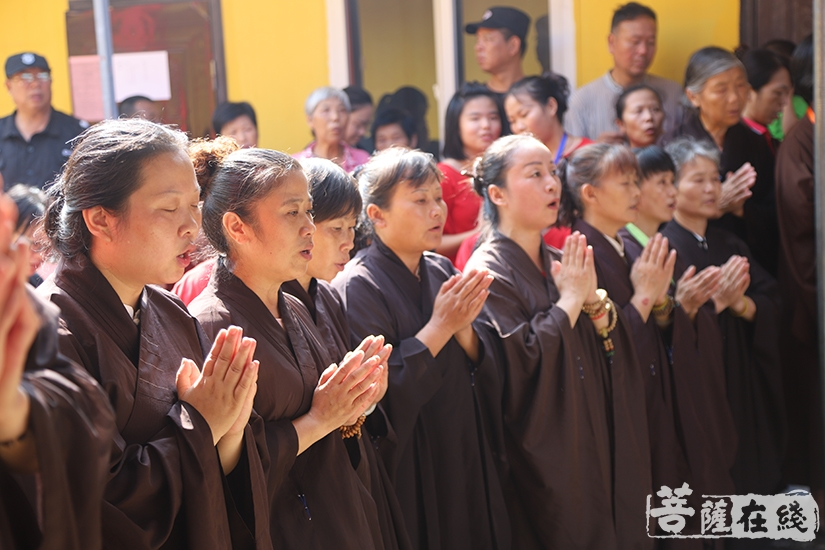 恭敬虔诚(图片来源:菩萨在线 摄影:妙澄)