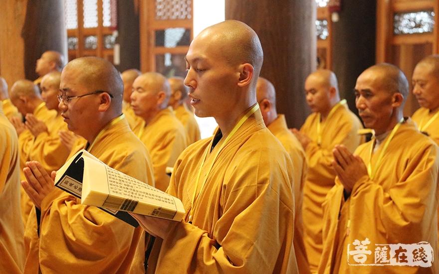 耐受清净戒法(图片来源:菩萨在线 摄影:妙月)