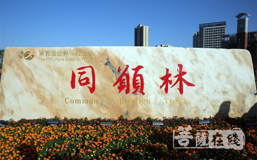 """""""同愿林""""(圖片來源:菩薩在線 攝影:妙梵)"""