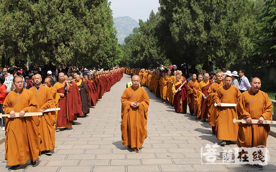 众戒子前往少林寺塔林(图片来源:菩萨在线 摄影:王颖)