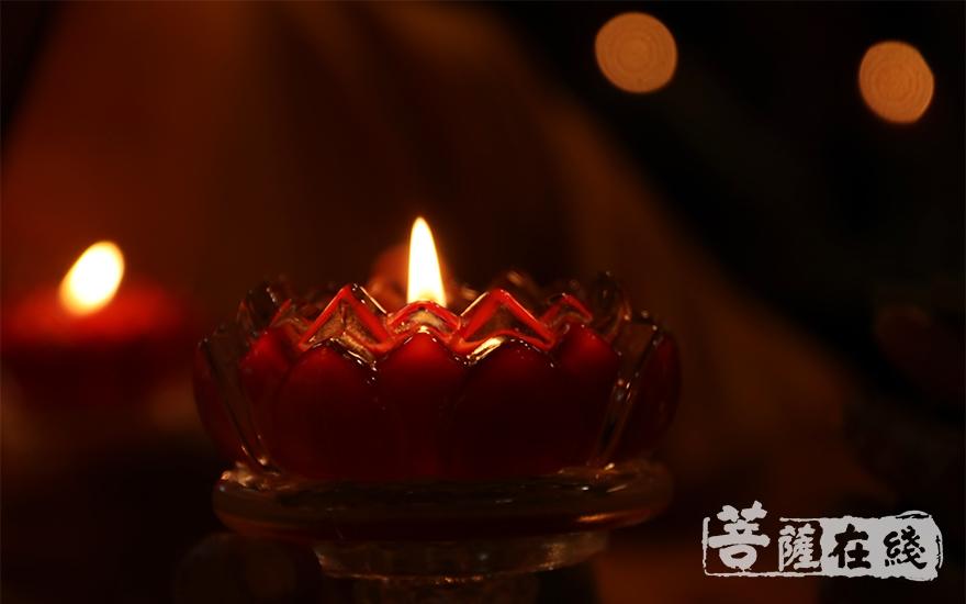 佛法代代相传 亦如灯灯长明(图片来源:菩萨在线 摄影:施琪)