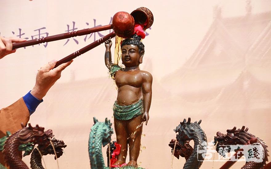 以香汤净水灌沐太子像(图片来源:菩萨在线 摄影:齐志国)
