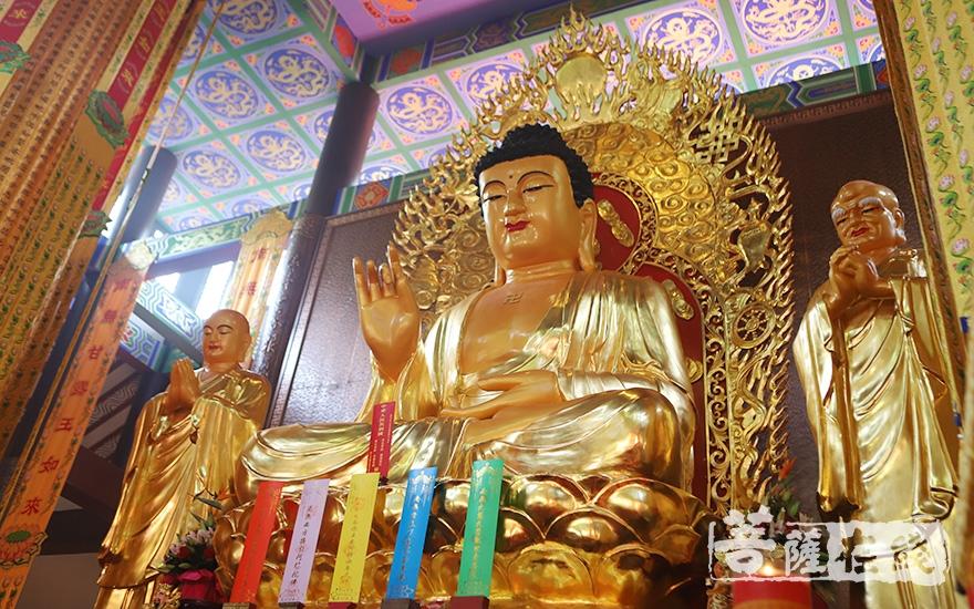 莊嚴佛像(圖片來源:菩薩在線 攝影:王穎)
