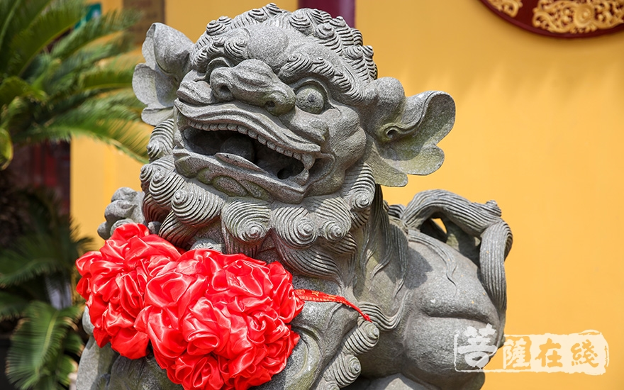 石獅子晉院典禮(圖片來源:菩薩在線 攝影:盧鵬宇)