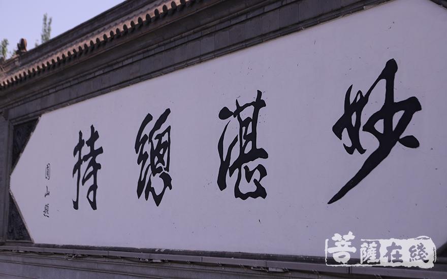 圆山长老亲题:妙湛总持(图片来源:菩萨在线 摄影:王颖)