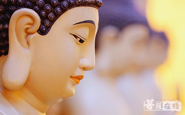 佛像、阿弥陀佛、建筑、特写、殿堂、大光圈-照煊法师-(7).jpg