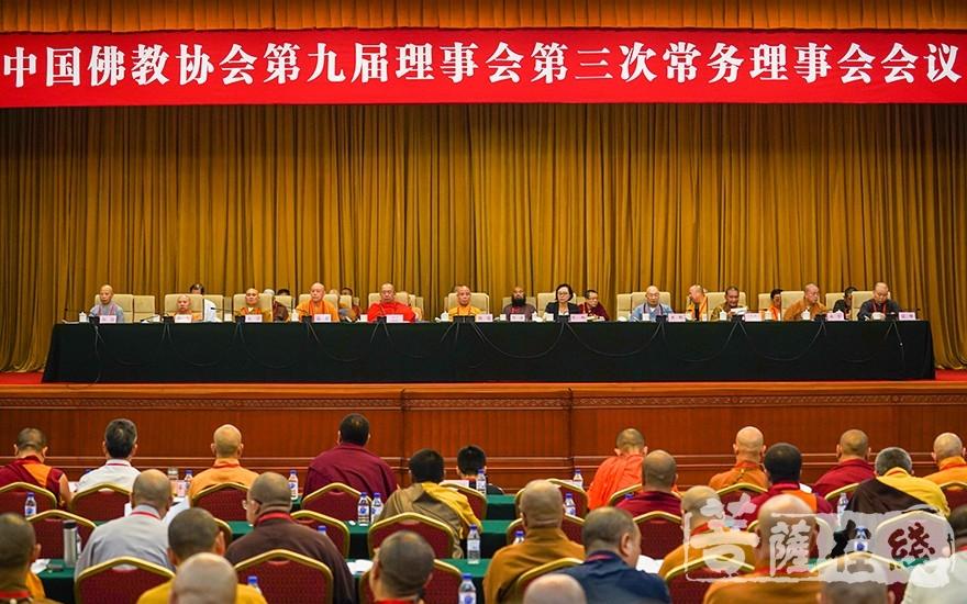 中国佛教协会第九届常务理事会第三次会议在北京召开(图片来源:菩萨在线 摄影:唐林雪)