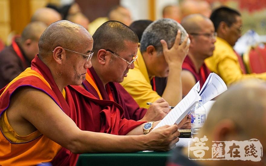 各地佛教界紧密团结在以习近平同志为核心的党中央周围(图片来源:菩萨在线 摄影:唐林雪)