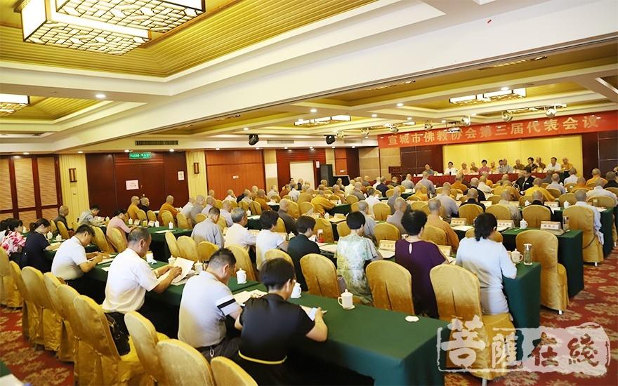 与会人员阅读会议文件(图片来源:菩萨在线 摄影:王颖)