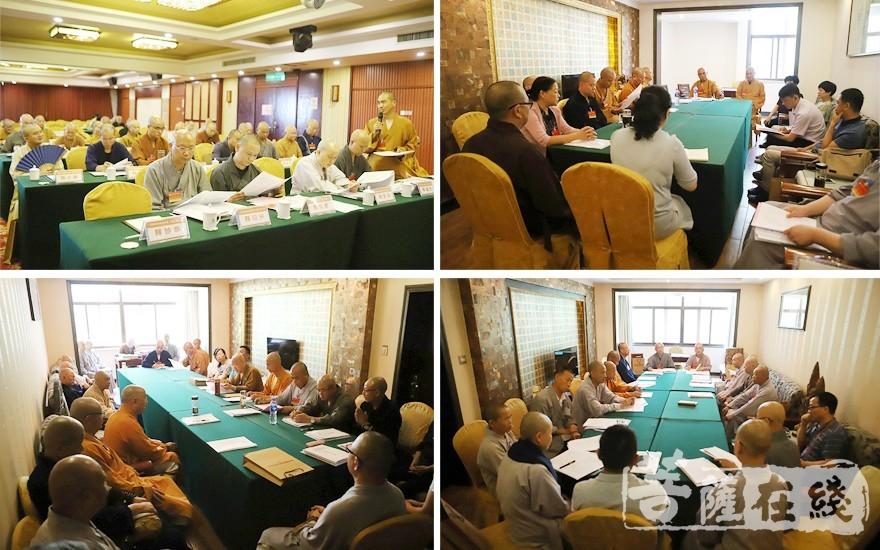 分组讨论(图片来源:菩萨在线 摄影:贺雪垠)