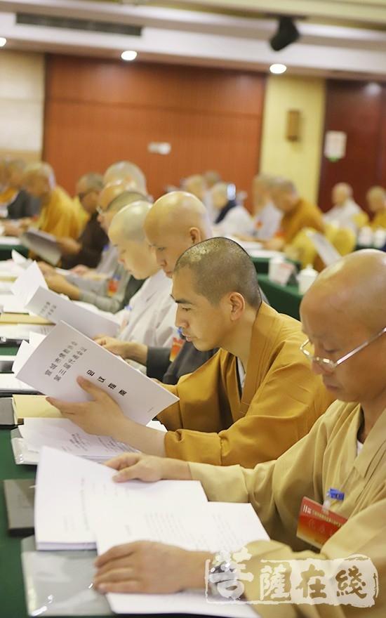 认真审议文件(图片来源:菩萨在线 摄影:贺雪垠)