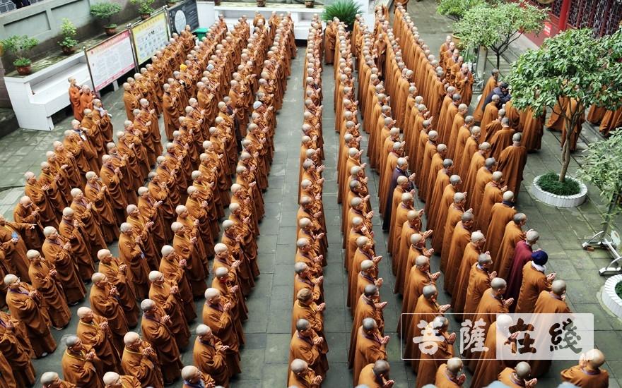 排班(图片来源:菩萨在线 摄影:李蕴雨)