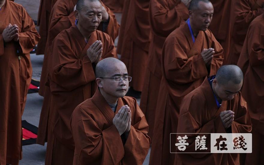 端身正念(图片来源:菩萨在线 摄影:王颖)