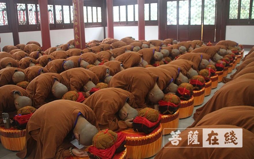 求授沙彌戒(圖片來源:菩薩在線 攝影:鄧彬)