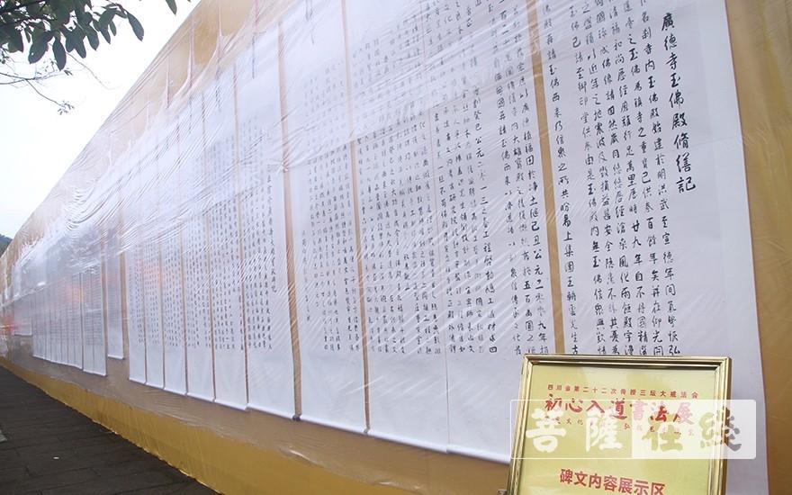 書法展示(圖片來源:菩薩在線 攝影:王穎)