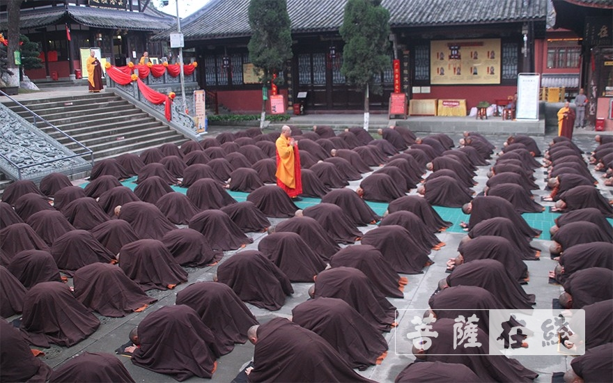 独显一身(图片来源:菩萨在线 摄影:王颖)