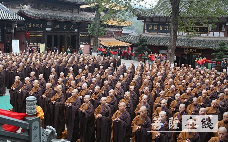 尼众部新戒整齐排班(图片来源:菩萨在线 摄影:贺雪垠)