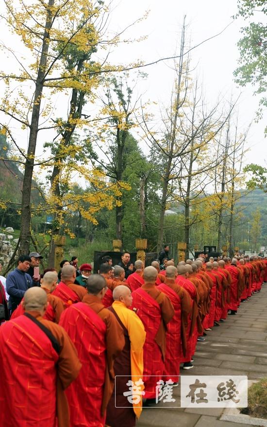 前往莲花广场(图片来源:菩萨在线 摄影:李蕴雨)