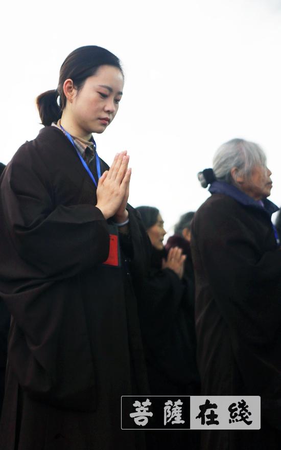 虔诚礼拜(图片来源:菩萨在线 摄影:李蕴雨)