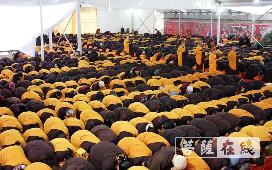 礼佛一拜(图片来源:菩萨在线 摄影:李蕴雨)